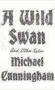 A wild Swan-web